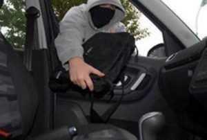 Брянца наказали трудовой терапией за похищение документов из авто