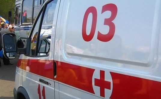 В ДТП под Брянском погибла женщина и пострадала 8-летняя девочка