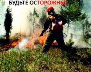 В Брянске снова ввели особый противопожарный режим