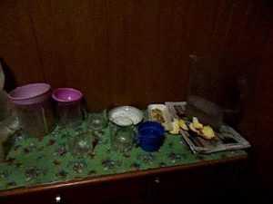 В Брянске полиция вылила 15 литров конфискованного самогона