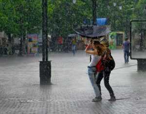 В Брянск вернутся дожди и грозы