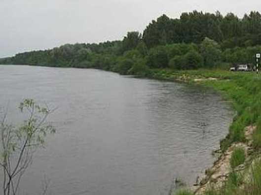 В Брянске утонул мужчина