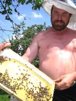 Брянцы смогут полакомиться самым ценным медом – весенним