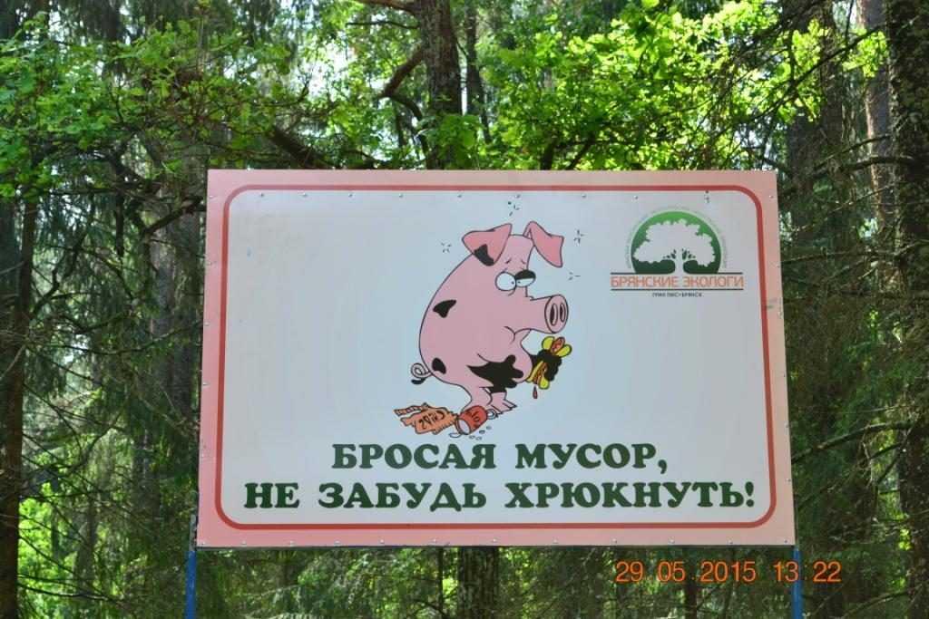 Брянские экологи очистили поляну возле памятника журналистам