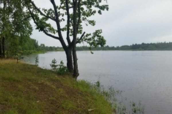В брянском озере утонул молодой мужчина