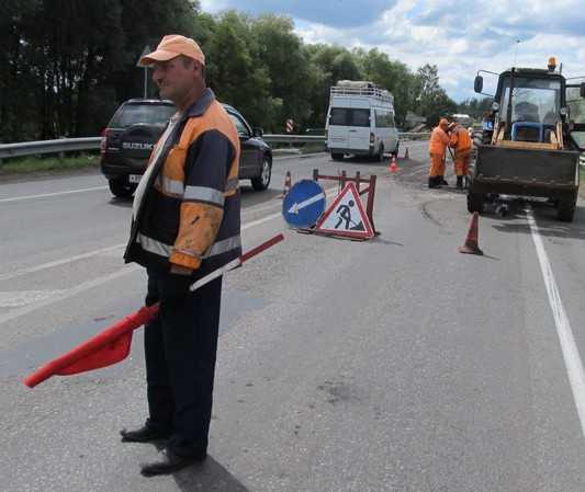 Расширение дороги Брянск – Смоленск стало невозможным из-за 19 удавов