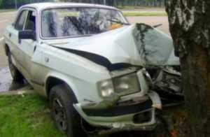 Дерево отправило в больницу 19-летнего брянского водителя