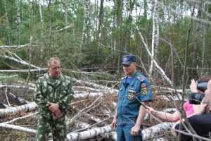 Пожары в радиационной зоне Брянской области потушили