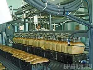 Брянские хлебокомбинаты станут гигантским предприятием