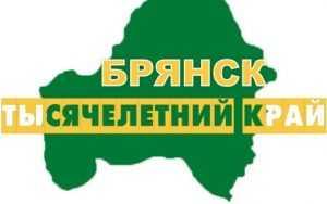 Брянской области выбрали проект туристического бренда