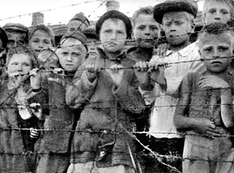 Брянские чиновники обидели узницу фашистских концлагерей