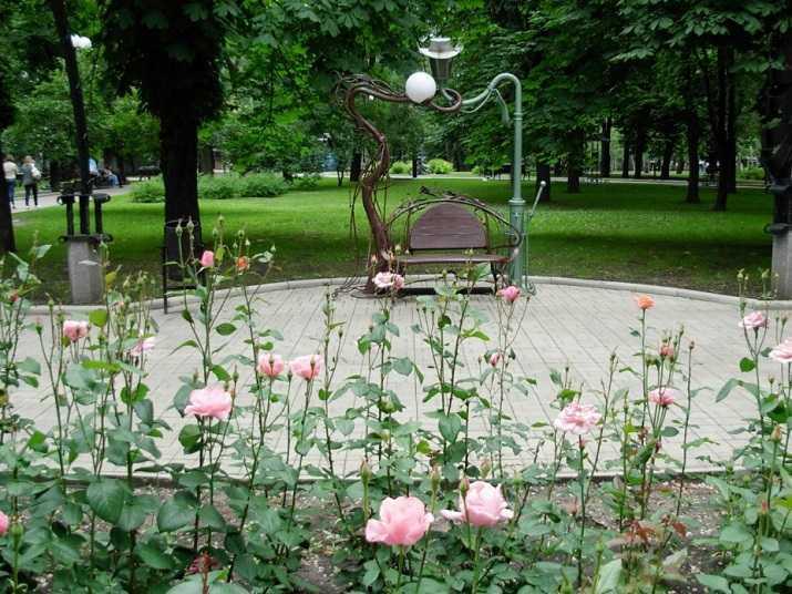 В Брянске на Кургане Бессмертия установят 32 скамейки и фонари