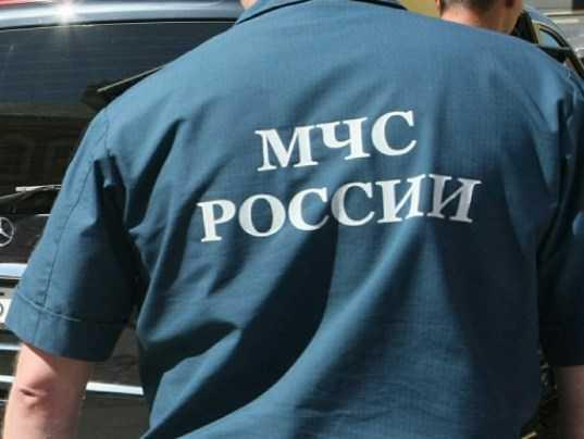 В Брянске за хищение осуждены «контрагенты» экс-главы управления МЧС