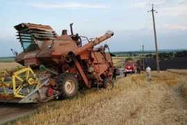 В Брянской области сгорели три гектара пшеницы