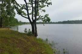 В брянском озере утонула девушка