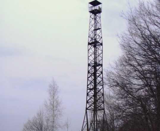 Брянский облсуд подтвердил бездействие управления лесами и пожарных