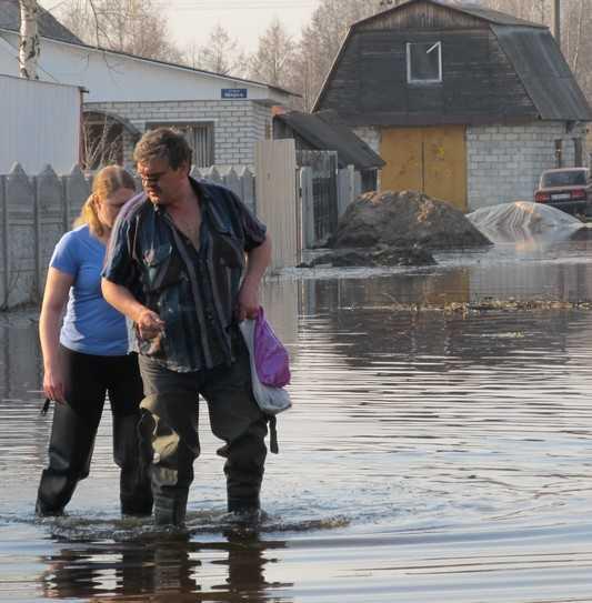 Многодетным брянцам построят поселок в Радице-Крыловке