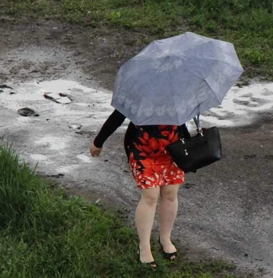 С понедельника в Брянскую область возвратятся дожди