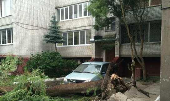 В Брянске стихия оставила без света восемь многоэтажек