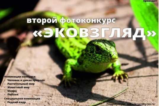 «Брянский лес» предложил новый фотоконкурс ценителям природы