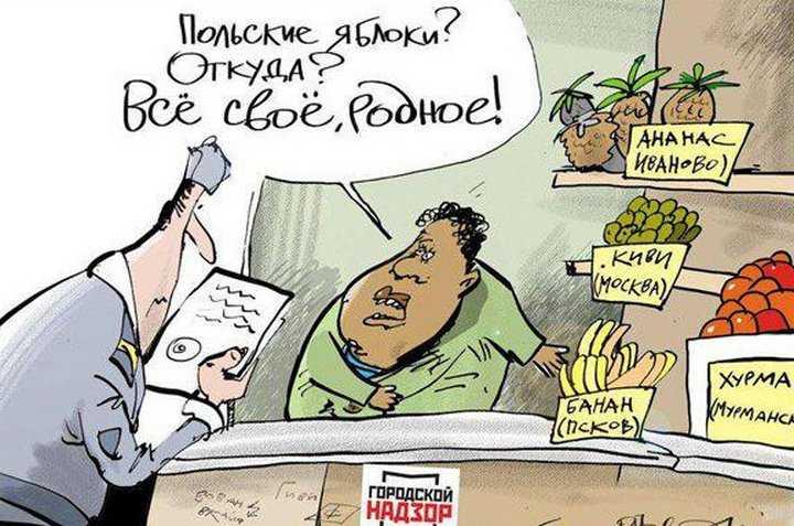 Ввоз в Брянскую область санкционных товаров уменьшился в 10 раз