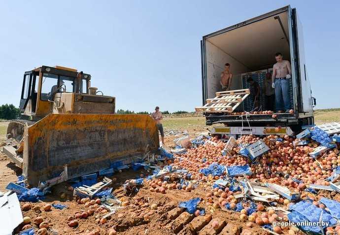 Уничтожение персиков на брянской границе вызвало истерику у соседей