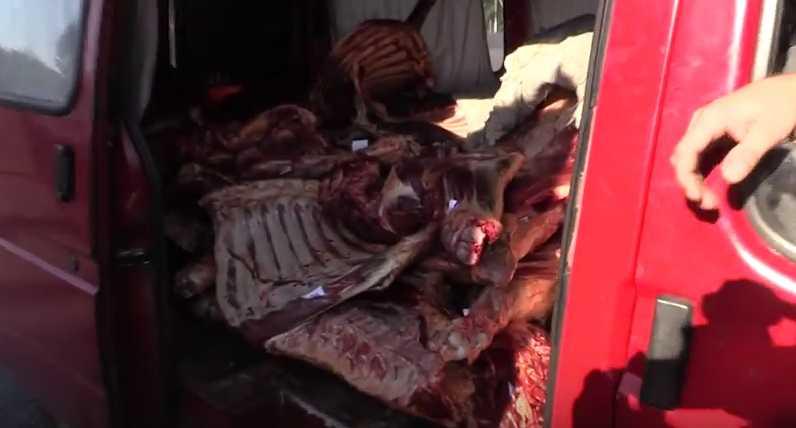 Под Брянском контрабандную говядину утилизировали
