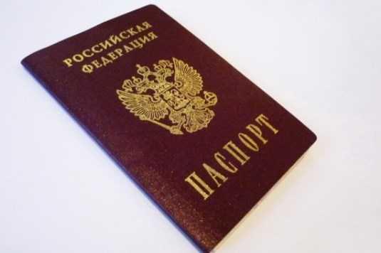 Брянский суд наказал женщину за похищенный у сожителя паспорт