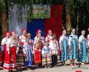 День Брянского района отпразднуют конкурсом юных моделей и салютом