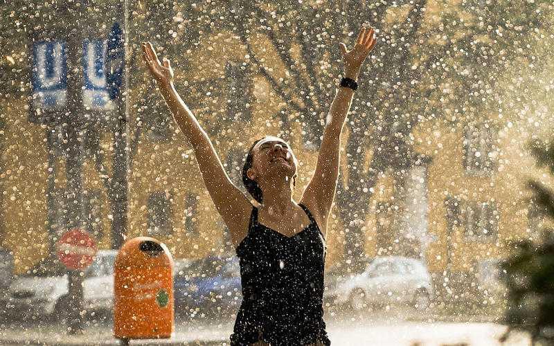 В ночь на пятницу в Брянске ожидается дождь