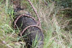 В Десне возле брянского посёлка нашли вторую бомбу за неделю