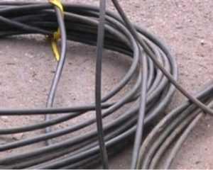 Полиция поймала похитителей кабеля с брянского овощехранилища