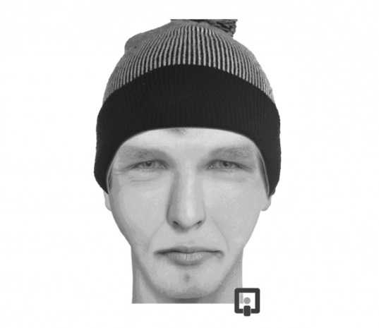 Следователи ищут преступника, покалечившего полицейского в Брянске