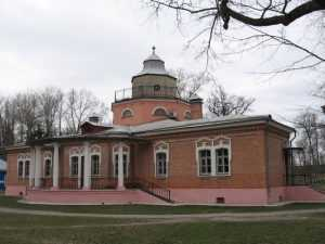 Брянские литературоведы предложили снести дом-музей в Красном Роге