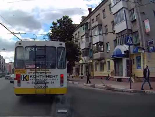 Рогатый напал на жителей Брянска (видео)
