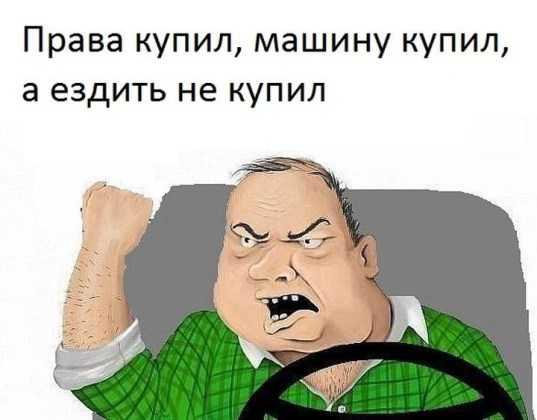Брянского водителя наказали принудительным трудом за поддельные «права»