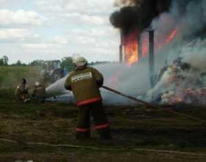 В брянском посёлке пожар уничтожил 18 тонн сена