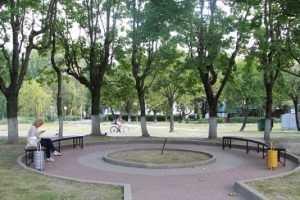 На Кургане в Брянске появились новые скамейки и заработал фонтан