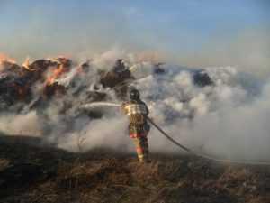 Огонь уничтожил у брянских селян сено и солому