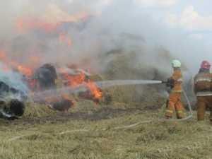 На поле брянского хозяйства огонь уничтожил солому