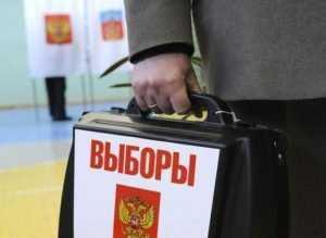 Предвыборная гонка на Брянщине прошла проверку на демократию