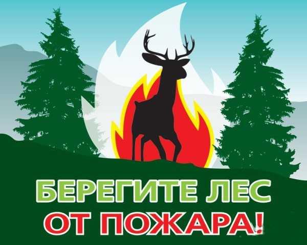 В Брянской области отменили противопожарный режим