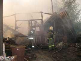 В Дятькове огонь уничтожил пилораму