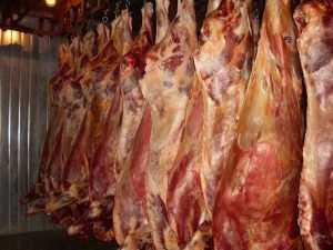 В Брянск из Курска привезли зараженную говядину