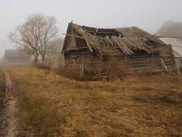 Журналистка из Подмосковья рассказала об угасшей брянской деревне