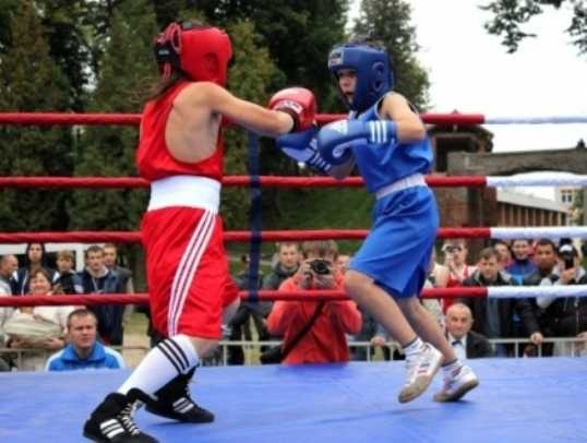 Брянские боксёры стали лучшими в Смоленске