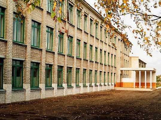 Директора брянской школы наказали за отравление пятиклассников