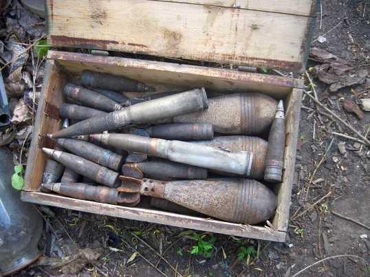 Брянского пенсионера отправили в колонию за взрывчатку в гараже