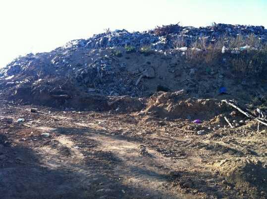 В пригороде Брянска выросла незаконная мусорная гора