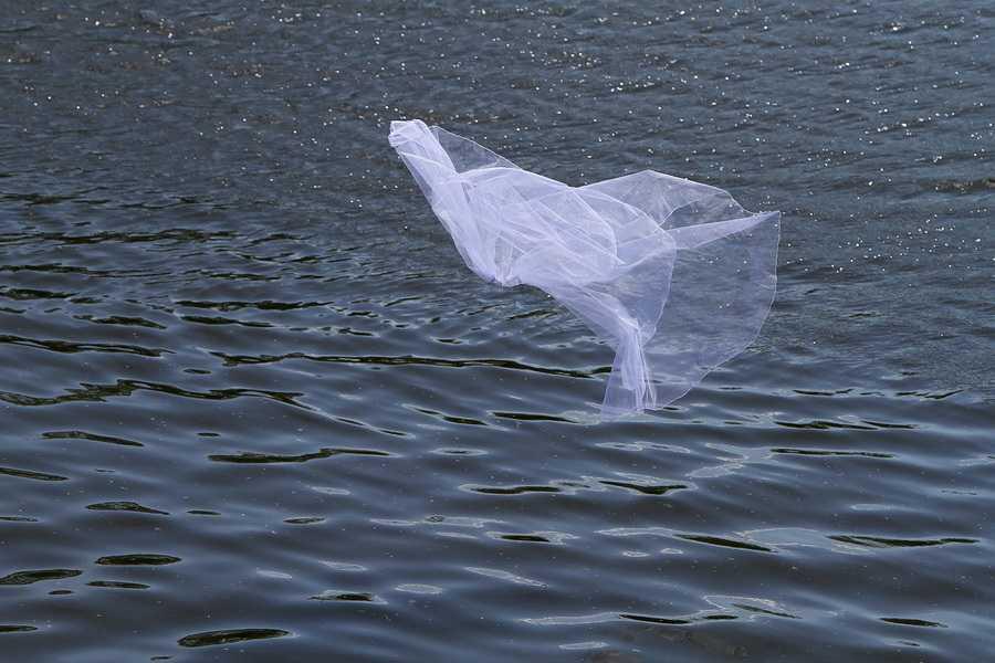 Со дна брянского озера подняли тело женщины